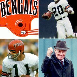 Cincinnati Bengals 82