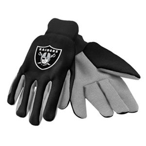 Forever Collectibles 74204 NFL Oakland Raiders